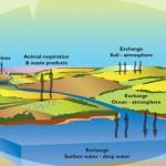 the British Geological Survey (BGS)