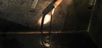 Newtown sludge